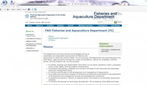 fao fisheries and agriculture