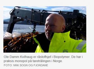 Ole Damm Kvilhaug